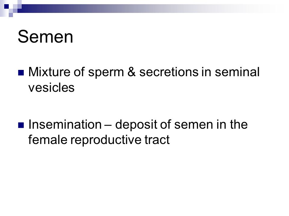 Obstetrics  Definition of Obstetrics Branch of medicine