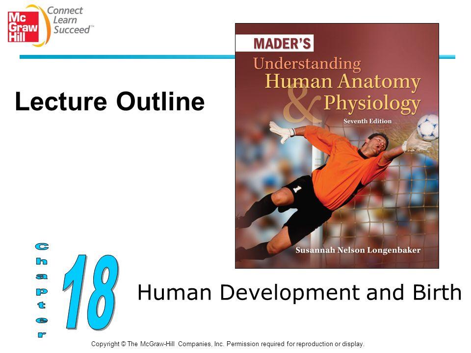 Human Development and Birth Copyright © The McGraw-Hill Companies ...