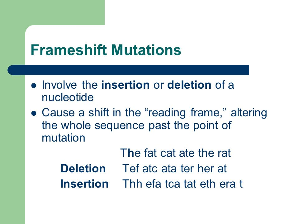Frameshift Mutations Involve the insertion or deletion of a nucleotide Cause a shift in the reading frame, altering the whole sequence past the point of mutation The fat cat ate the rat Deletion Tef atc ata ter her at Insertion Thh efa tca tat eth era t