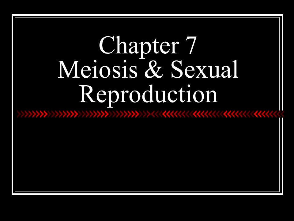 how to remember the difference between mitosis and meiosis