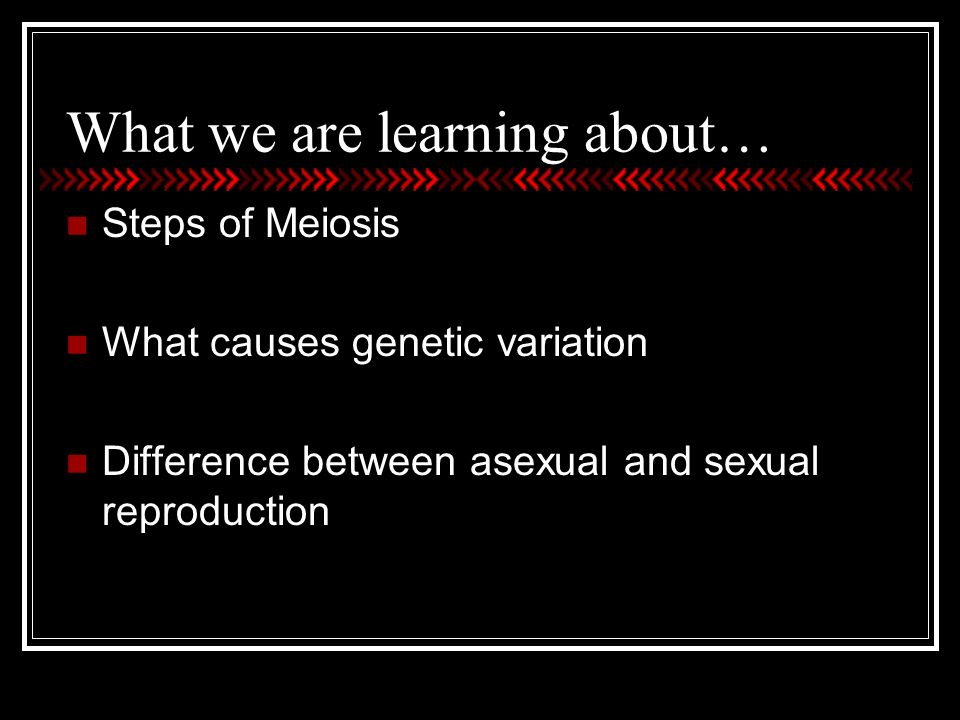 Chapter 7 meiosis and sexual reproduction answer key