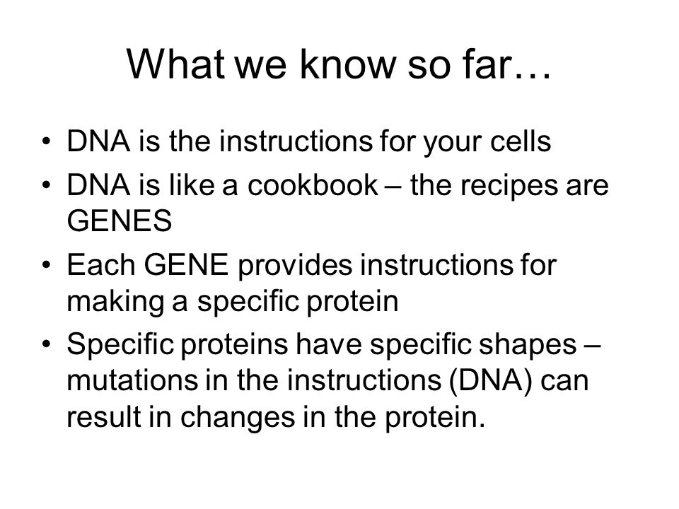 What we know so far… DNA is the instructions for your cells DNA is like a cookbook – the recipes are GENES Each GENE provides instructions for making a specific protein Specific proteins have specific shapes – mutations in the instructions (DNA) can result in changes in the protein.