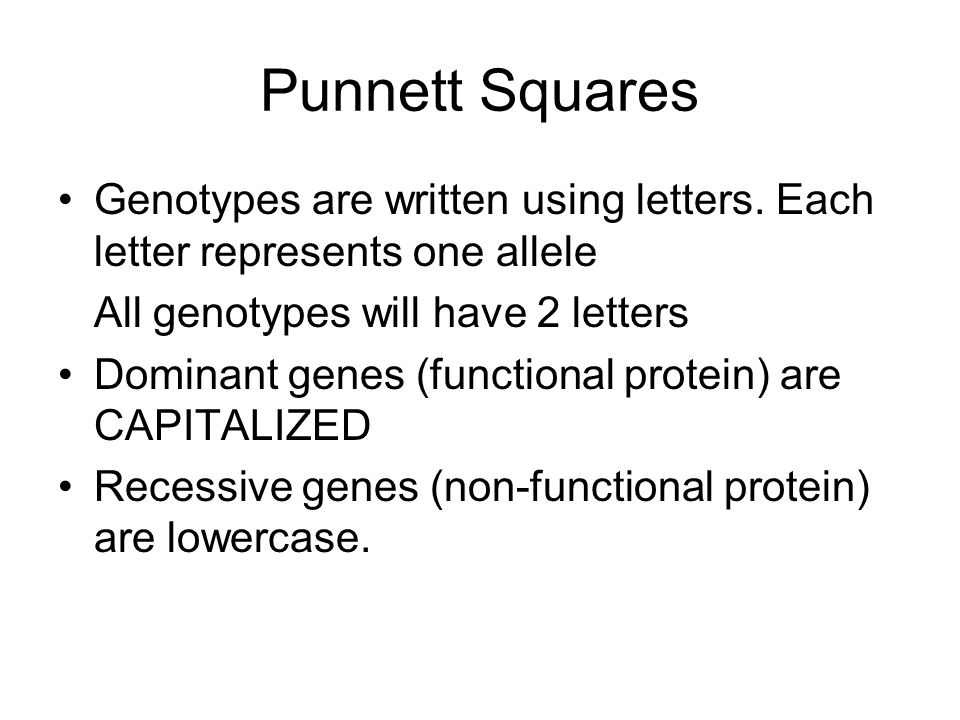 Genotypes are written using letters.
