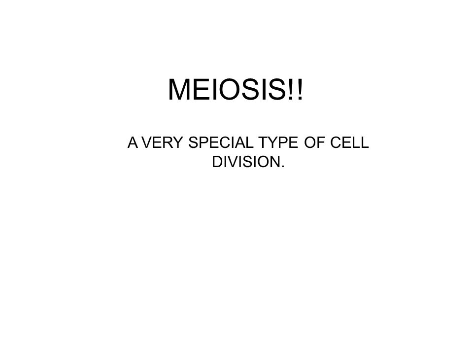 MEIOSIS!! A VERY SPECIAL TYPE OF CELL DIVISION.
