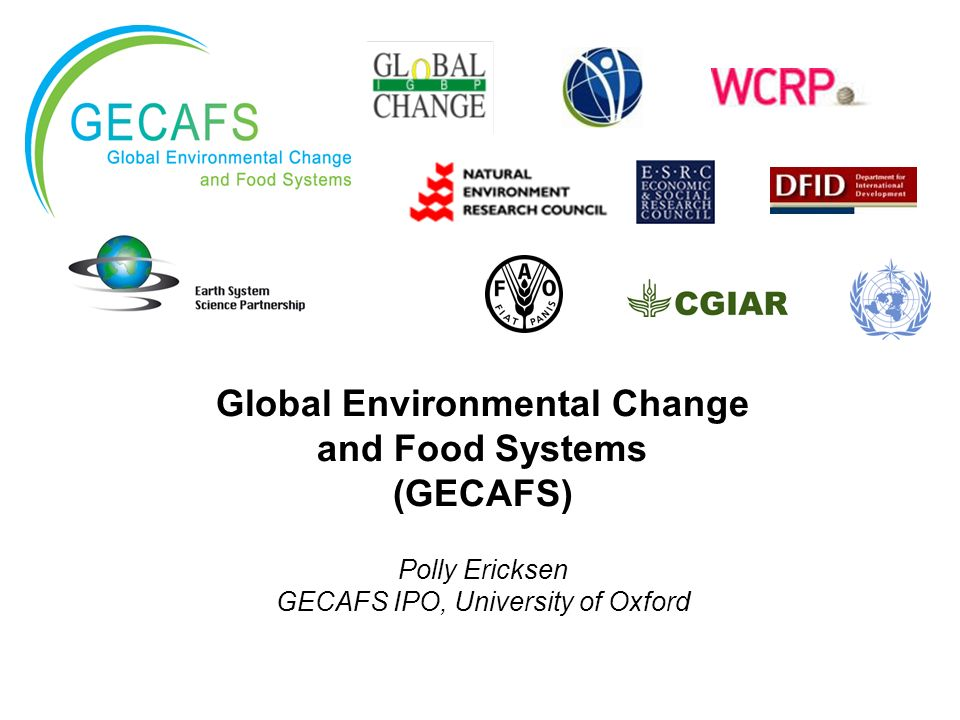Global Environmental Change and Food Systems (GECAFS) Polly Ericksen GECAFS IPO, University of Oxford