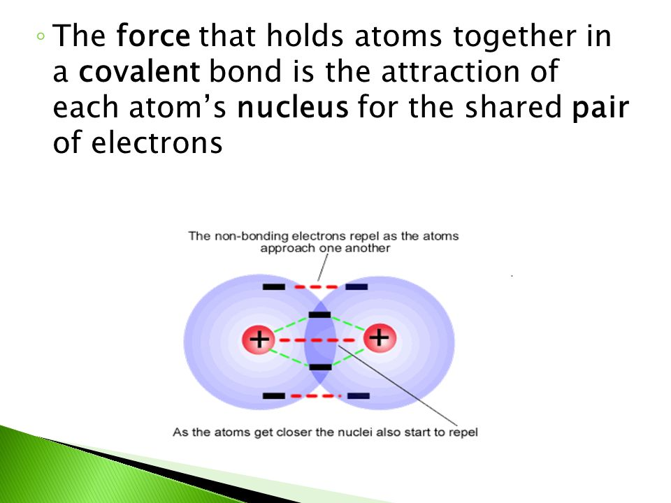 ◦ The force that holds atoms together in a covalent bond is the attraction of each atom's nucleus for the shared pair of electrons