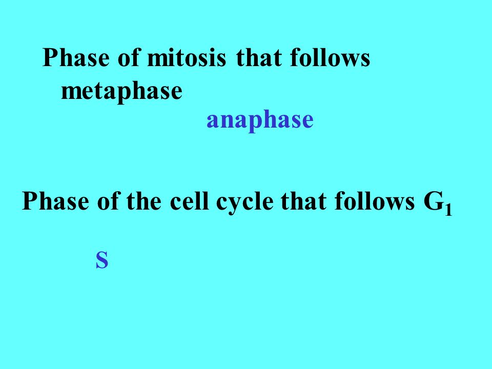 Phase of mitosis that follows metaphase anaphase Phase of the cell cycle that follows G 1 S