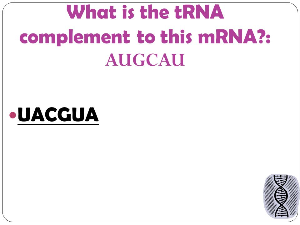 What is the tRNA complement to this mRNA : AUGCAU UACGUA