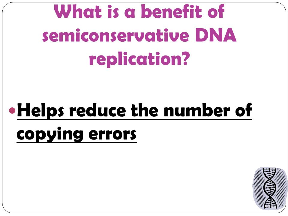 What is a benefit of semiconservative DNA replication Helps reduce the number of copying errors