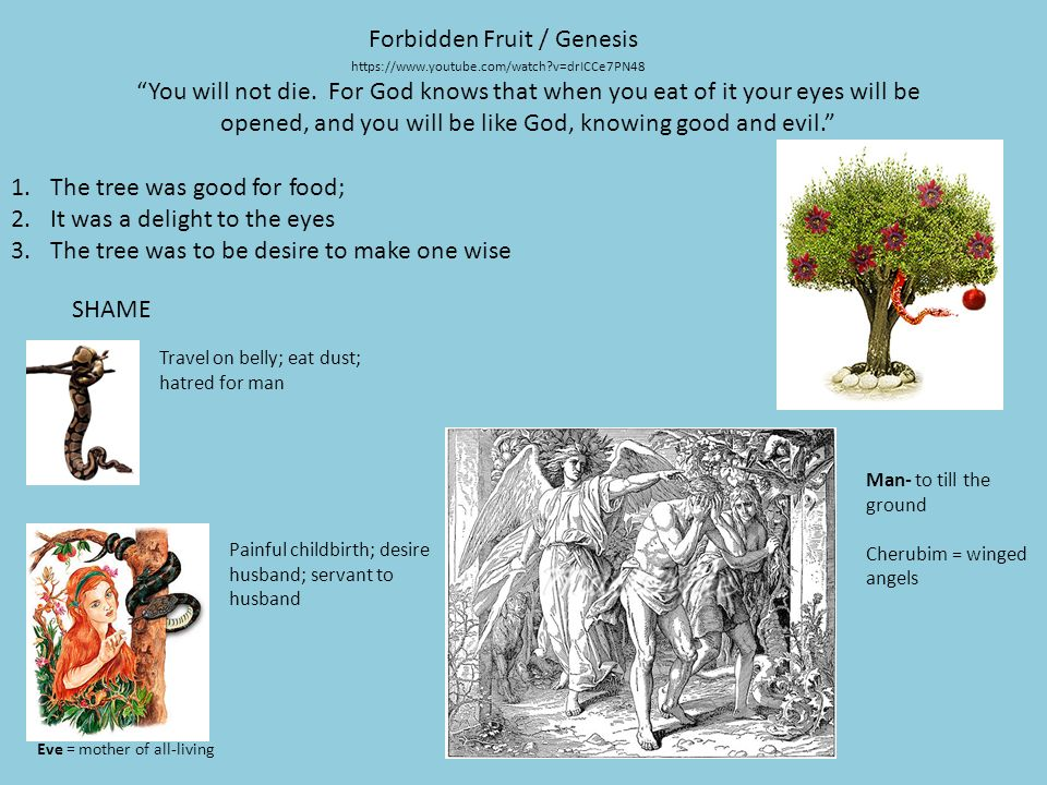 Creation: Heaven and Earth / Genesis ppt download