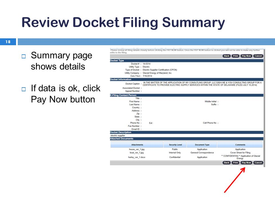 Review Docket Filing Summary 18  Summary page shows details  If data is ok, click Pay Now button