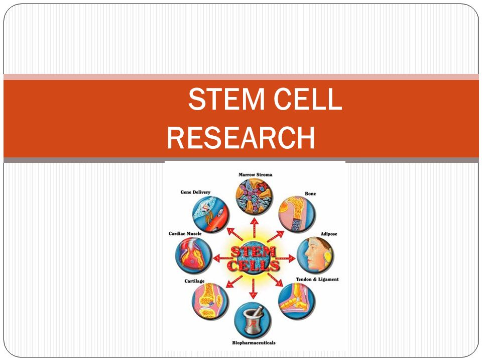 stem cell research pros and cons