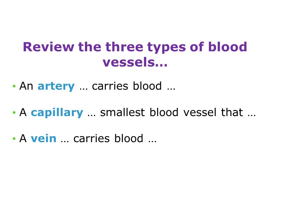 Review the three types of blood vessels… An artery … carries blood … A capillary … smallest blood vessel that … A vein … carries blood …