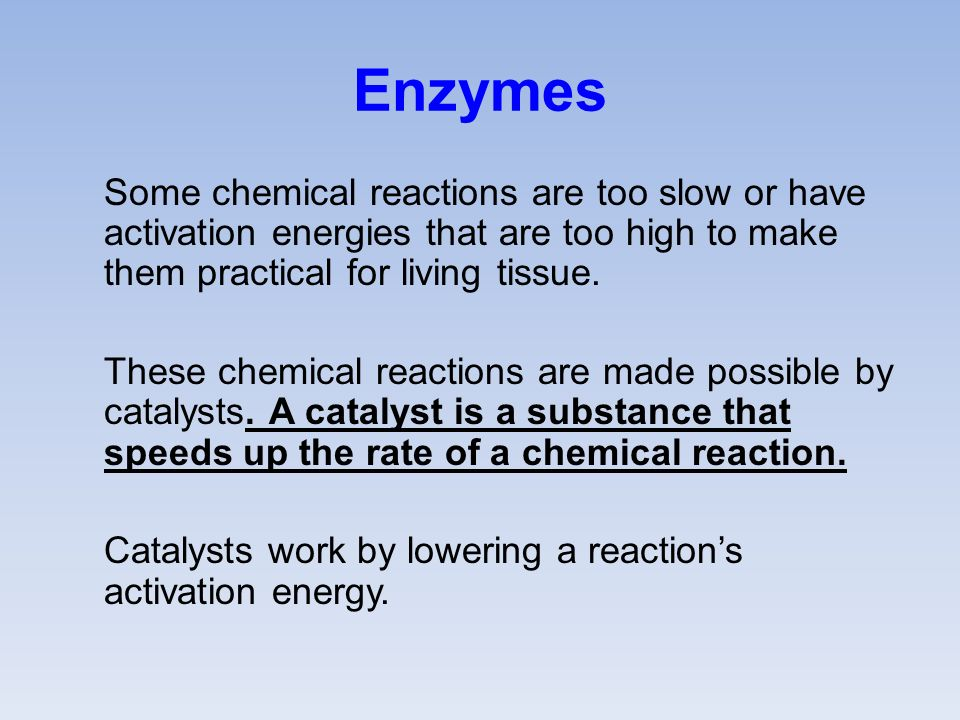 Enzymes Some chemical reactions are too slow or have activation energies that are too high to make them practical for living tissue.