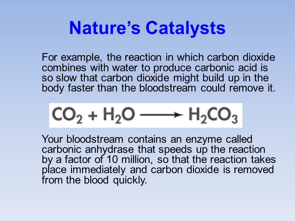 Nature's Catalysts For example, the reaction in which carbon dioxide combines with water to produce carbonic acid is so slow that carbon dioxide might build up in the body faster than the bloodstream could remove it.