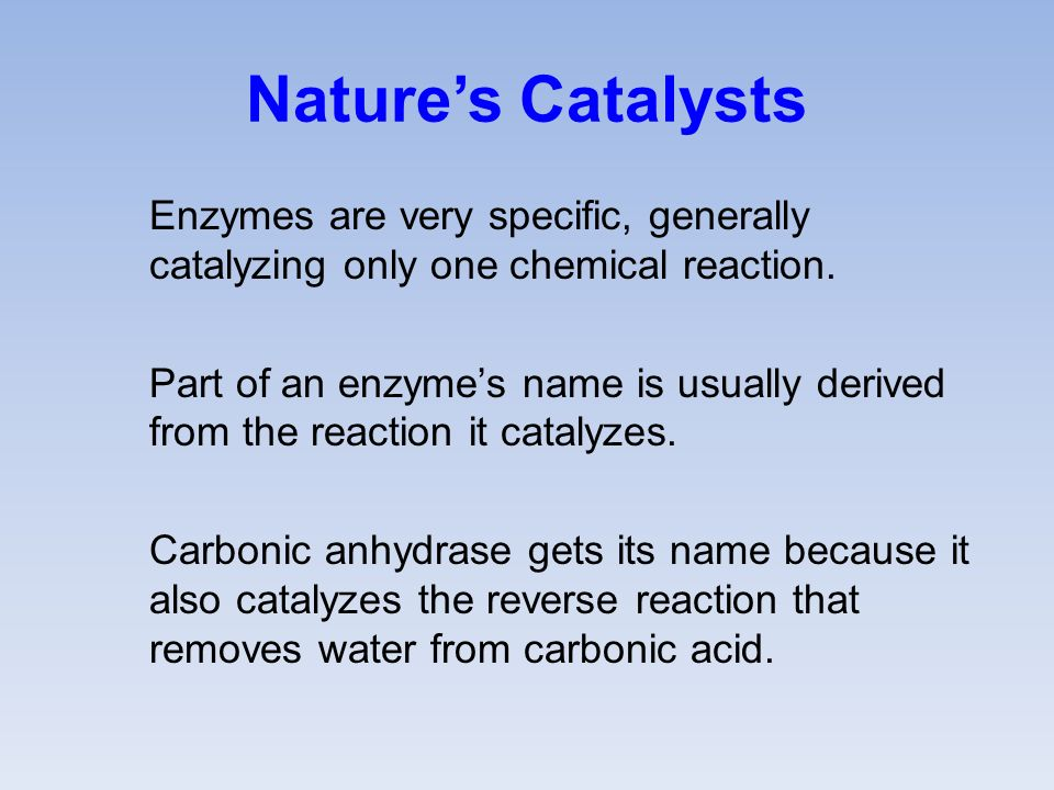 Nature's Catalysts Enzymes are very specific, generally catalyzing only one chemical reaction.