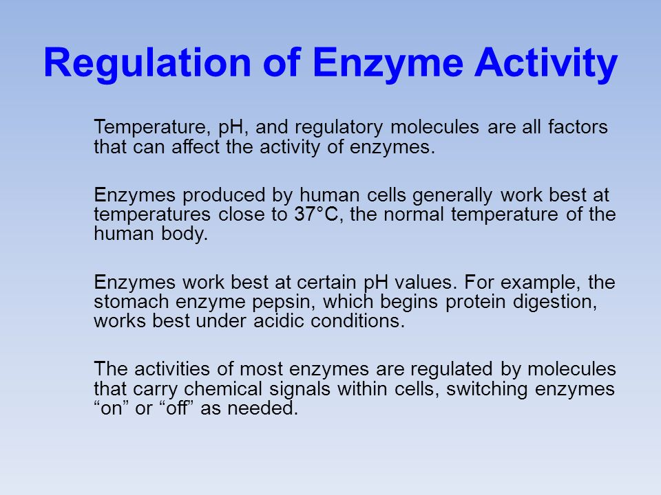 Regulation of Enzyme Activity Temperature, pH, and regulatory molecules are all factors that can affect the activity of enzymes.
