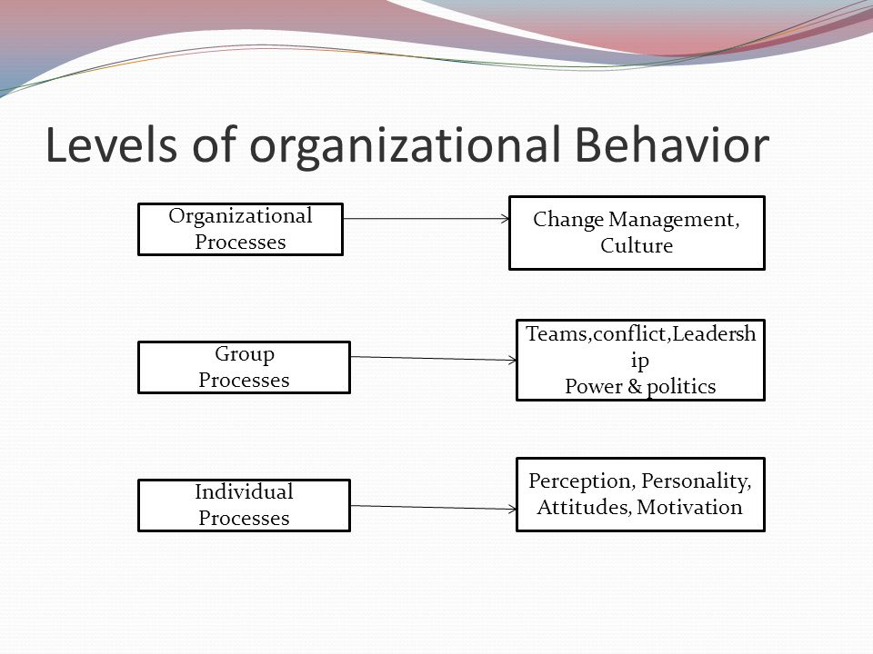 levels of organizational behavior