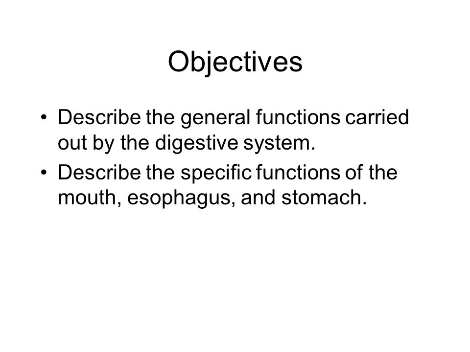 Objectives Describe the general functions carried out by the digestive system.