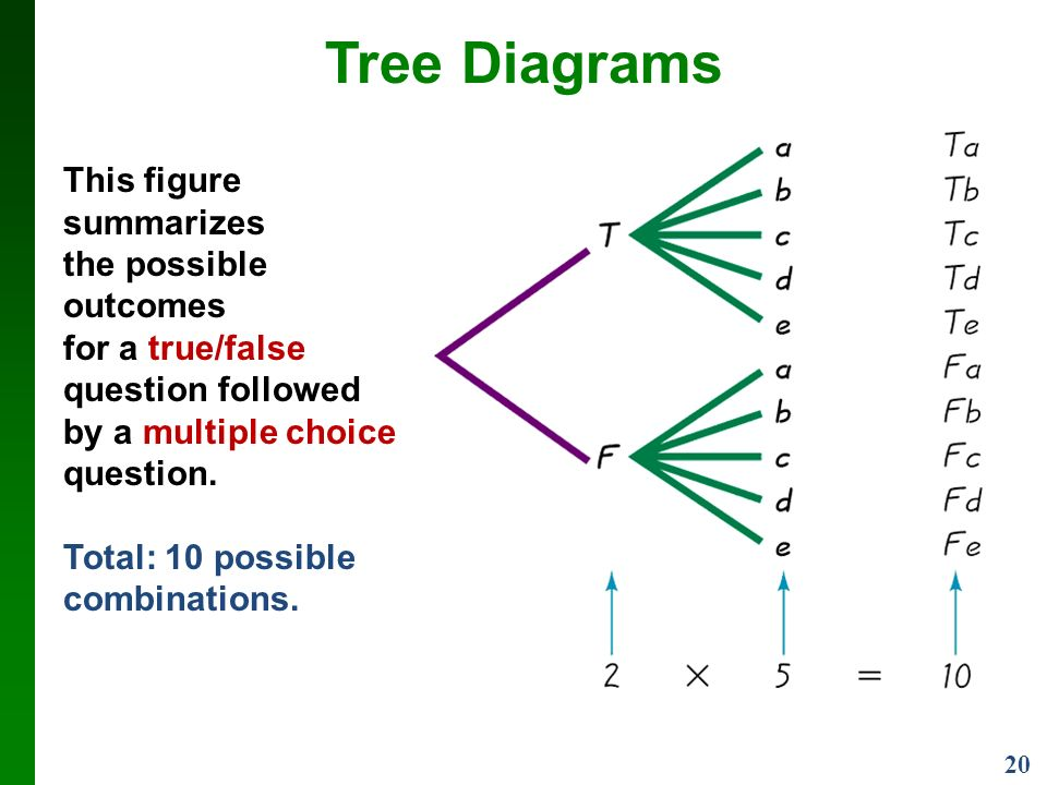 20 Tree Diagrams This figure summarizes the possible outcomes for a true/false question followed by a multiple choice question.
