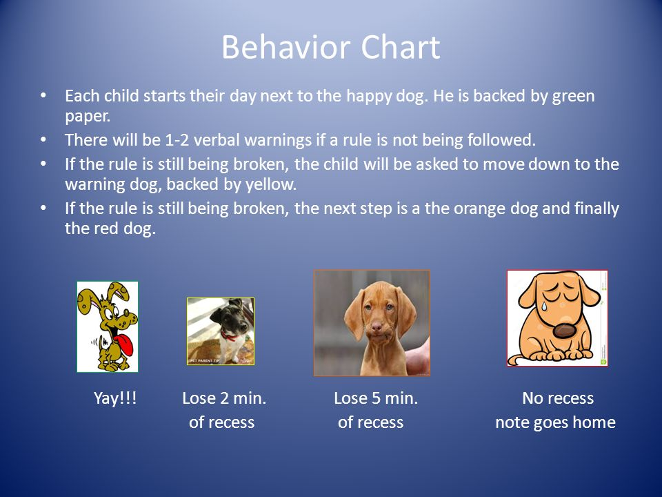 Behavior Chart Each child starts their day next to the happy dog.