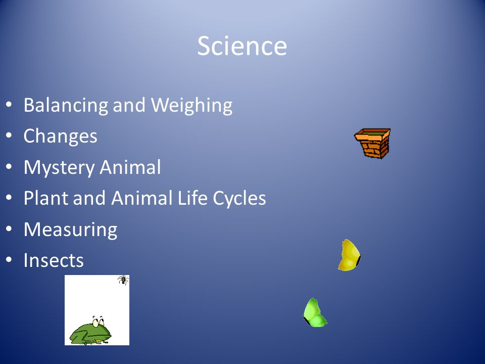 Science Balancing and Weighing Changes Mystery Animal Plant and Animal Life Cycles Measuring Insects