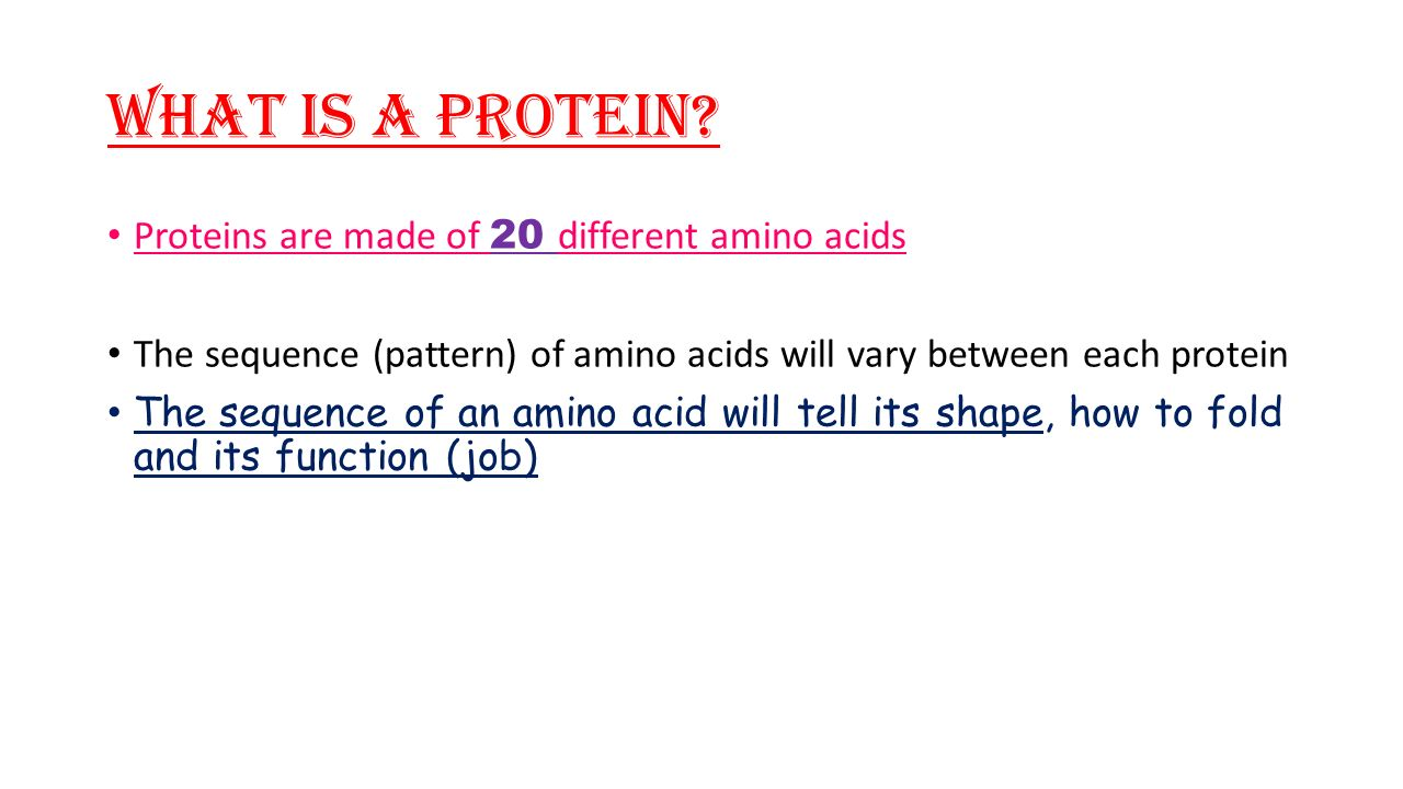 What is a Protein.