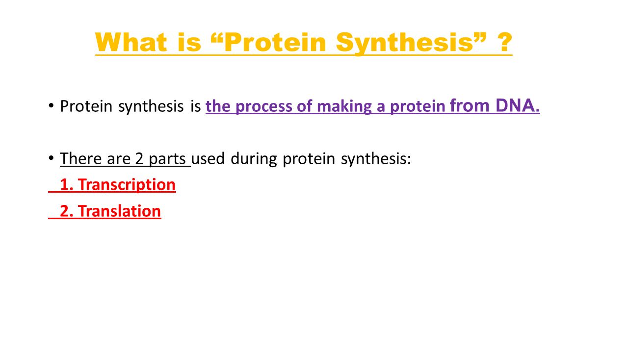 What is Protein Synthesis . Protein synthesis is the process of making a protein from DNA.