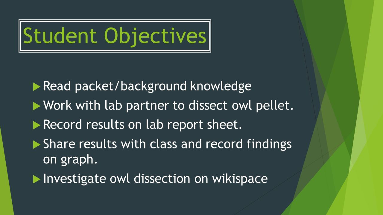 Lab Activity The Food Web of a Barn Owl Lab Activity Discover what a ...