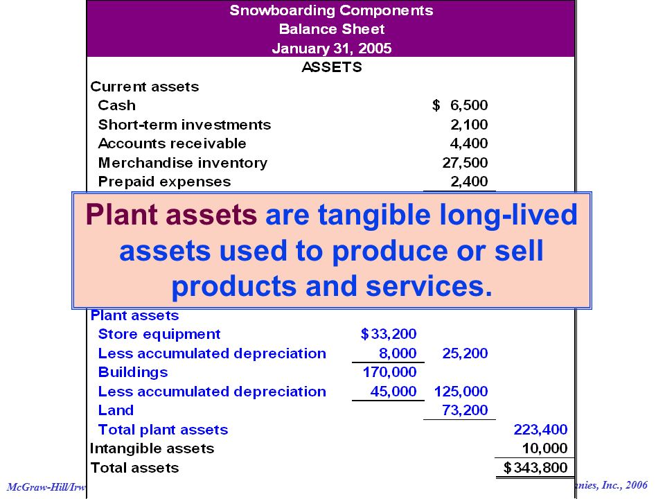 © The McGraw-Hill Companies, Inc., 2006 McGraw-Hill/Irwin46 Plant assets are tangible long-lived assets used to produce or sell products and services.