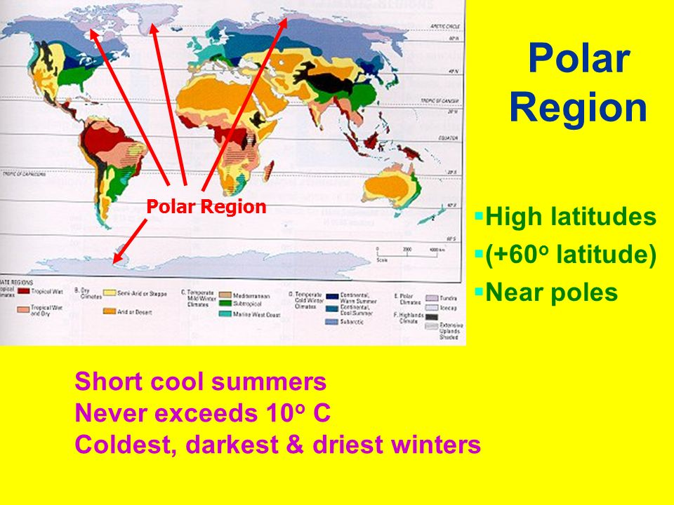 Polar Region  High latitudes  (+60 o latitude)  Near poles Short cool summers Never exceeds 10 o C Coldest, darkest & driest winters Polar Region