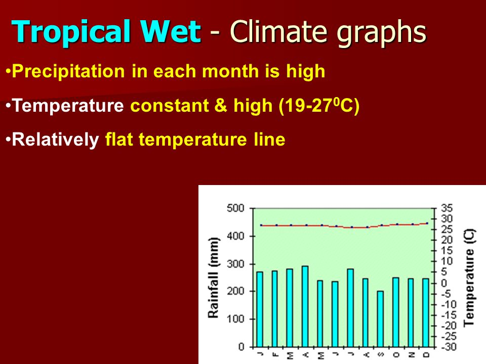 Tropical Wet - Climate graphs Precipitation in each month is high Temperature constant & high ( C) Relatively flat temperature line
