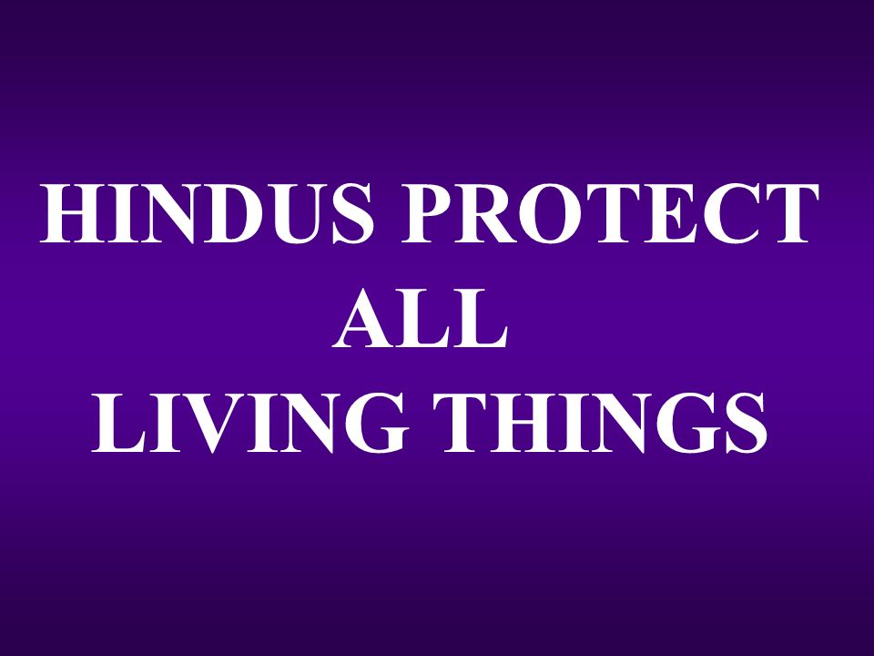 HINDUS PROTECT ALL LIVING THINGS