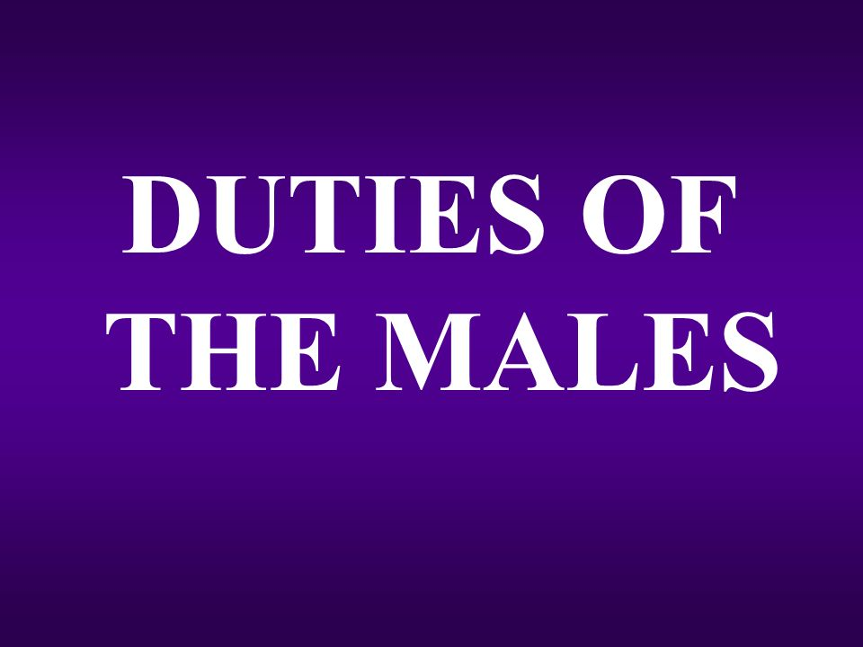 DUTIES OF THE MALES