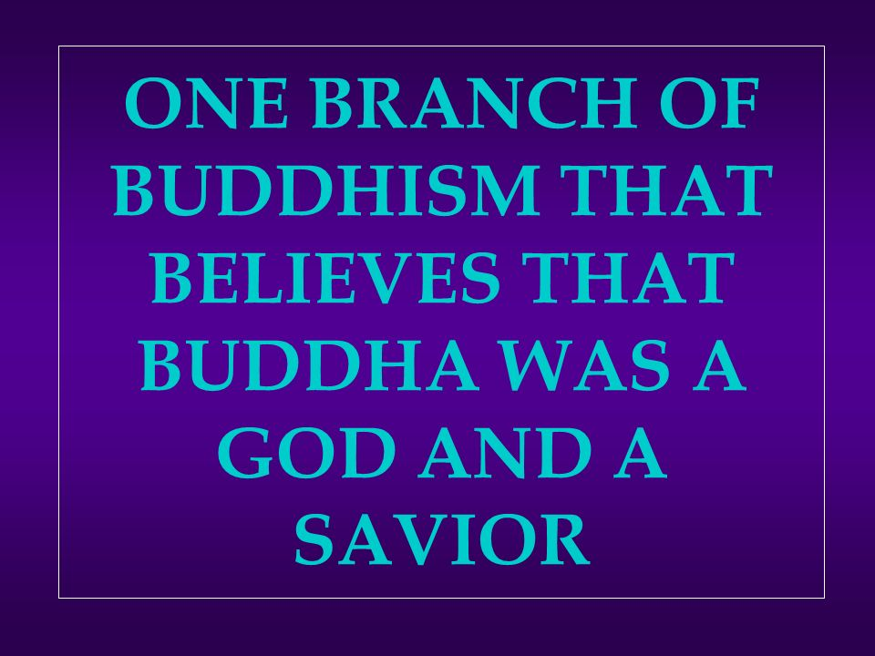 ONE BRANCH OF BUDDHISM THAT BELIEVES THAT BUDDHA WAS A GOD AND A SAVIOR