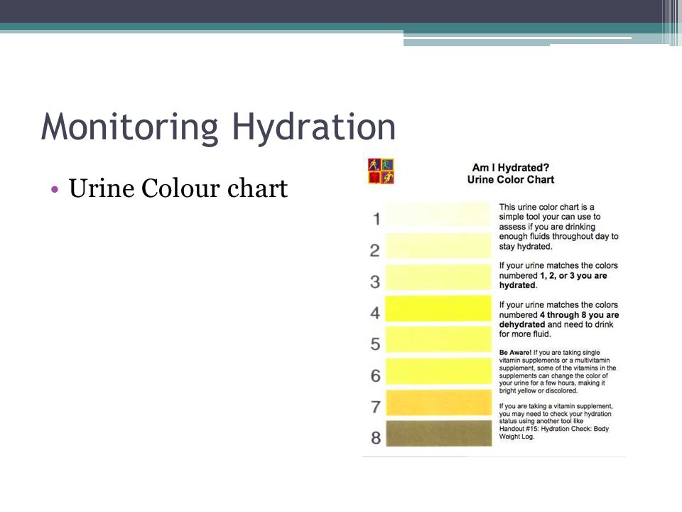 Hydration  Fluid – the forgotten nutrient Humans contain litres of
