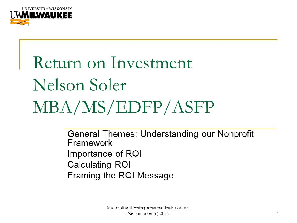 Return on Investment Nelson Soler MBA/MS/EDFP/ASFP General Themes ...