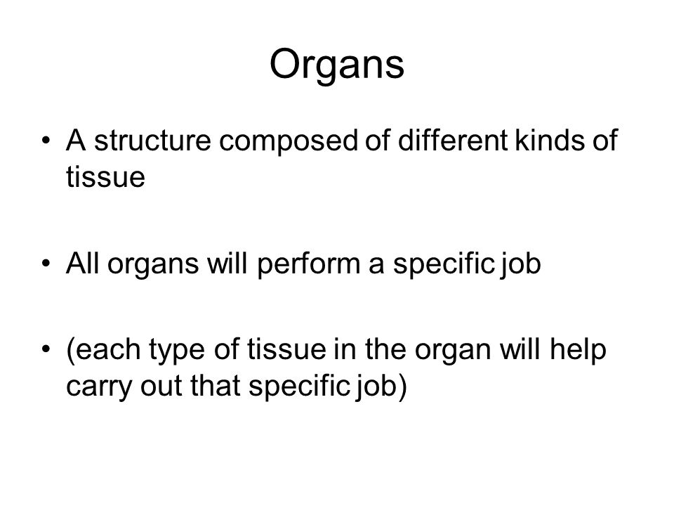 Organs A structure composed of different kinds of tissue All organs will perform a specific job (each type of tissue in the organ will help carry out that specific job)