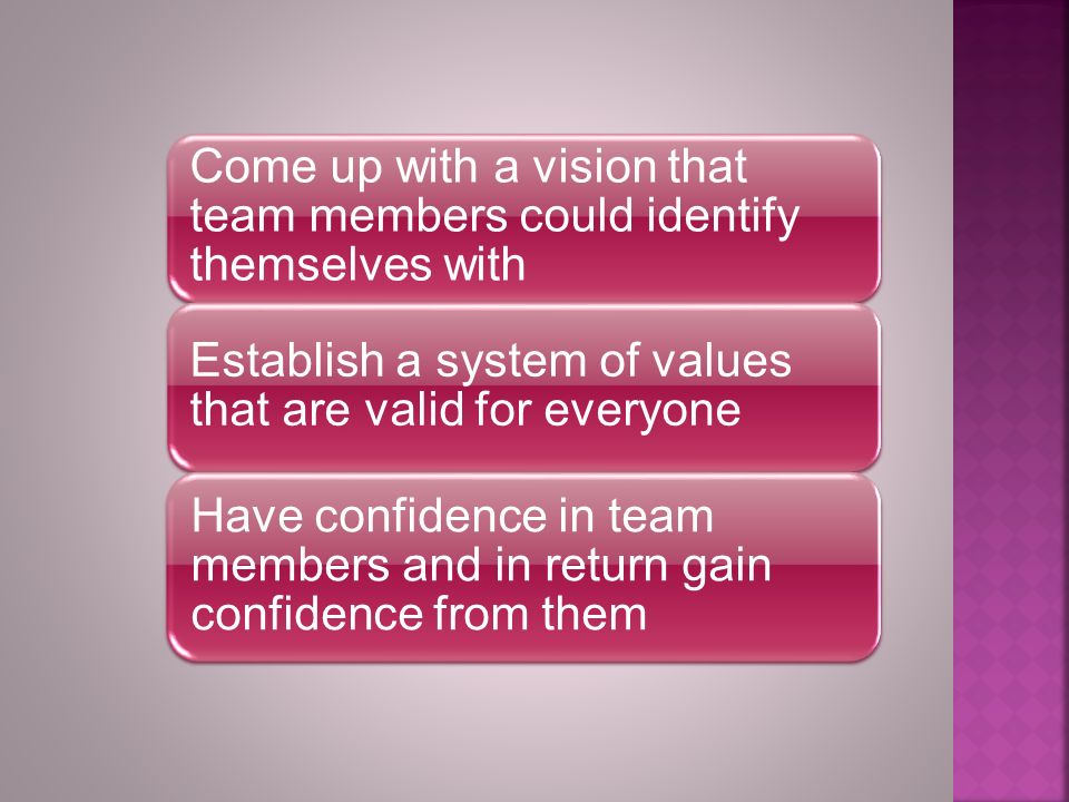 Come up with a vision that team members could identify themselves with Establish a system of values that are valid for everyone Have confidence in team members and in return gain confidence from them
