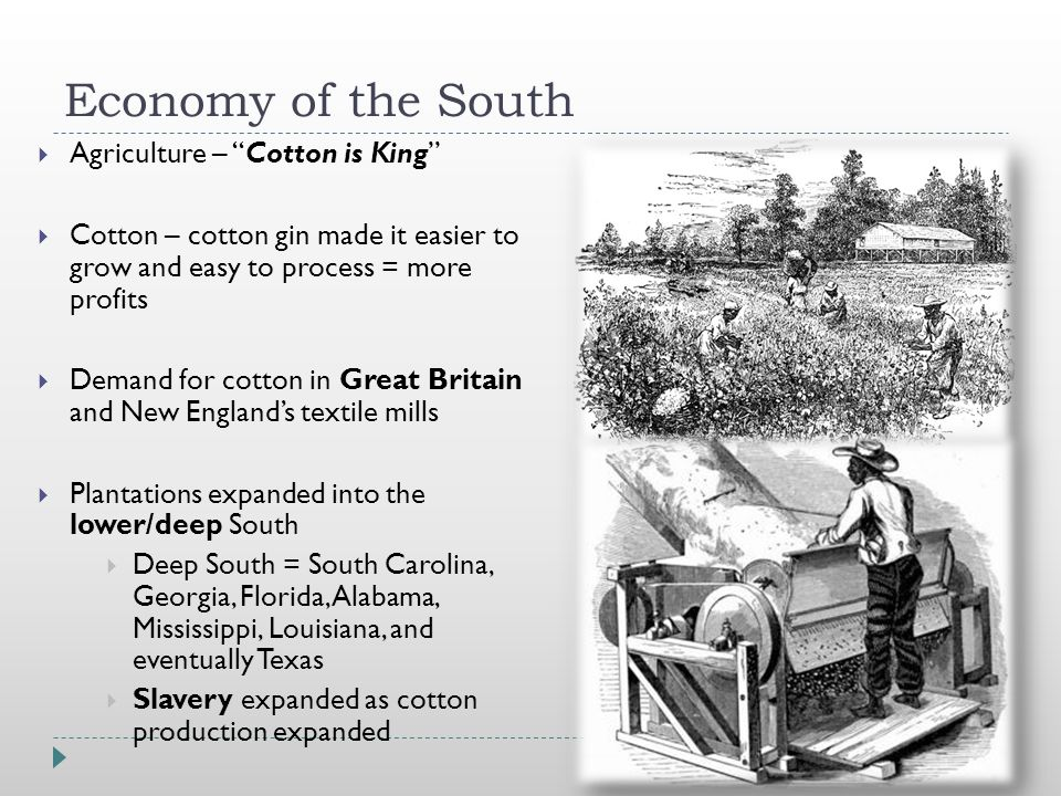 Economy of the South  Agriculture – Cotton is King  Cotton – cotton gin made it easier to grow and easy to process = more profits  Demand for cotton in Great Britain and New England's textile mills  Plantations expanded into the lower/deep South  Deep South = South Carolina, Georgia, Florida, Alabama, Mississippi, Louisiana, and eventually Texas  Slavery expanded as cotton production expanded