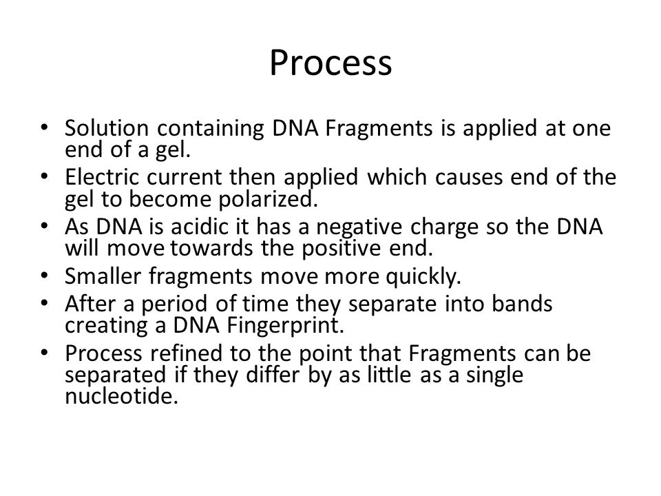 Process Solution containing DNA Fragments is applied at one end of a gel.