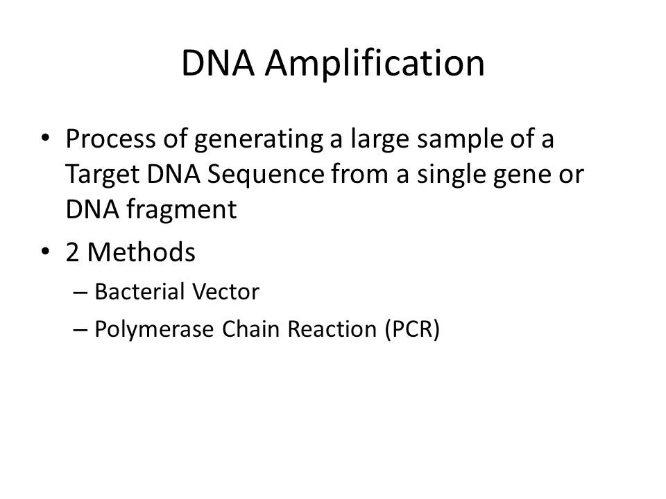 DNA Amplification Process of generating a large sample of a Target DNA Sequence from a single gene or DNA fragment 2 Methods – Bacterial Vector – Polymerase Chain Reaction (PCR)
