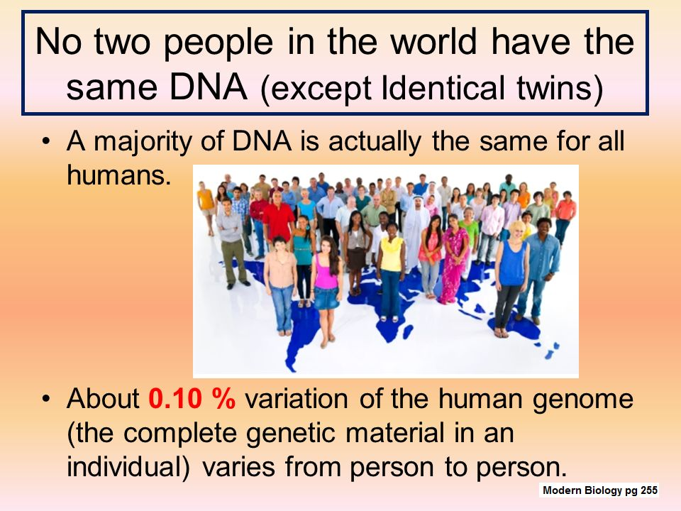 DNA FINGERPRINTS. No two people in the world have the same DNA (except  Identical twins) A majority of DNA is actually the same for all humans.  About ppt download