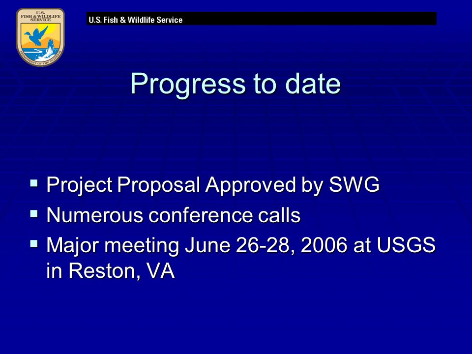 Progress to date  Project Proposal Approved by SWG  Numerous conference calls  Major meeting June 26-28, 2006 at USGS in Reston, VA
