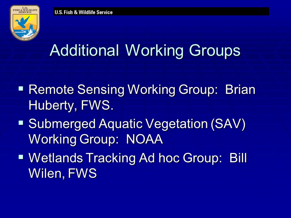 Additional Working Groups  Remote Sensing Working Group: Brian Huberty, FWS.