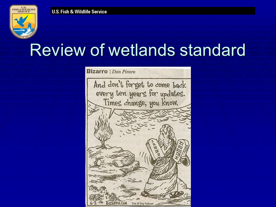 Review of wetlands standard