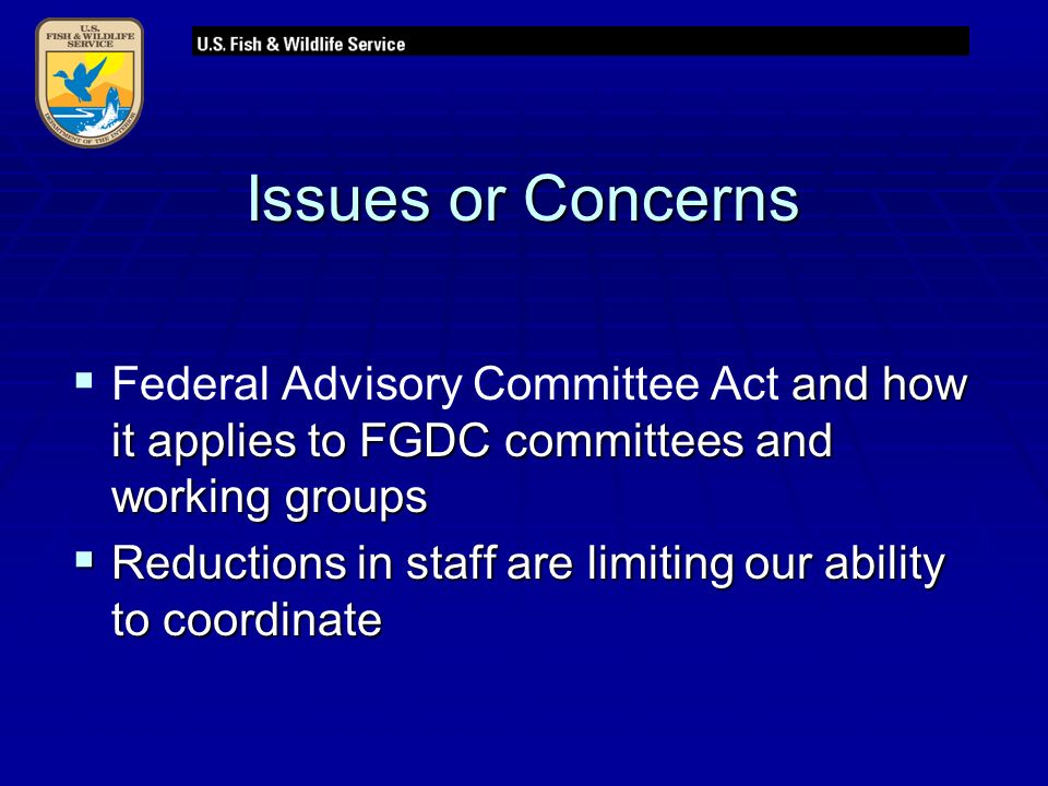 Issues or Concerns  and how it applies to FGDC committees and working groups  Federal Advisory Committee Act and how it applies to FGDC committees and working groups  Reductions in staff are limiting our ability to coordinate