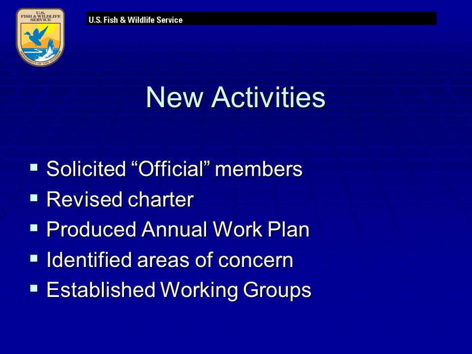 New Activities  Solicited Official members  Revised charter  Produced Annual Work Plan  Identified areas of concern  Established Working Groups