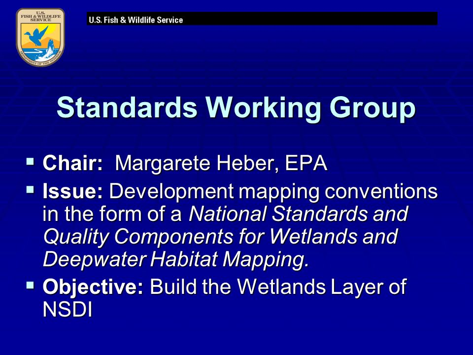 Standards Working Group  Chair: Margarete Heber, EPA  Issue: Development mapping conventions in the form of a National Standards and Quality Components for Wetlands and Deepwater Habitat Mapping.