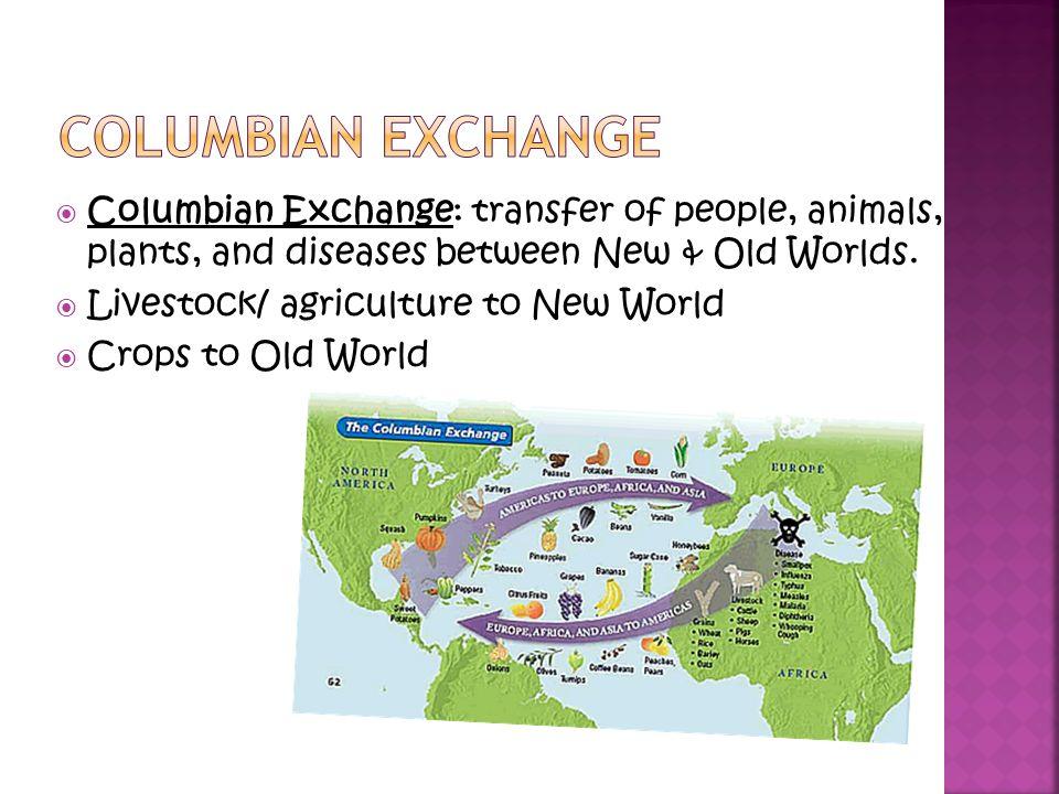 Casey Pasternak Period: 4   Columbian Exchange: transfer